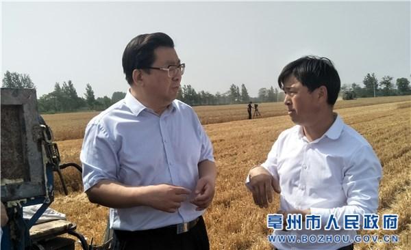 杜延安调研夏收夏种、粮食收购和秸秆禁烧工作